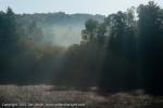2011-10-08-5544-dsc_8453