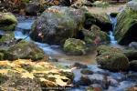 2011-10-08-5566-dsc_8475-edit
