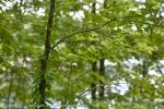 2011-08-25-4930-dsc_7749_hdr